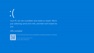 Dell Support Blue Screen