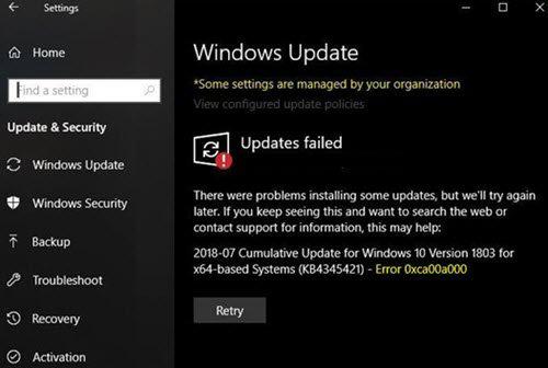 Windows Error 0xca00a000